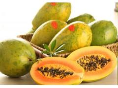木瓜45元/5斤 果皮光滑美观 甜美