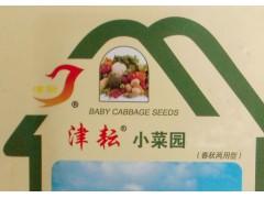津耘小菜园-青萝卜 植株健壮 板