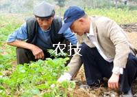 安徽省维准农业发展有限公司