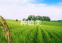 达权农业发展有限公司