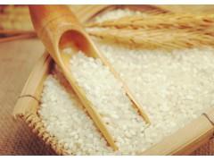 富硒大米 一级青米水稻新品种 泰