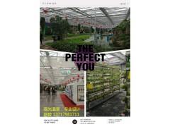 玻璃温室设计与建造
