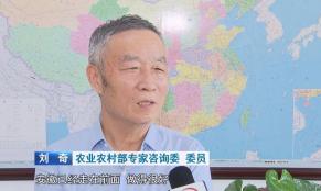 """安徽:""""绿色+科技""""擘画现代农业新图景"""